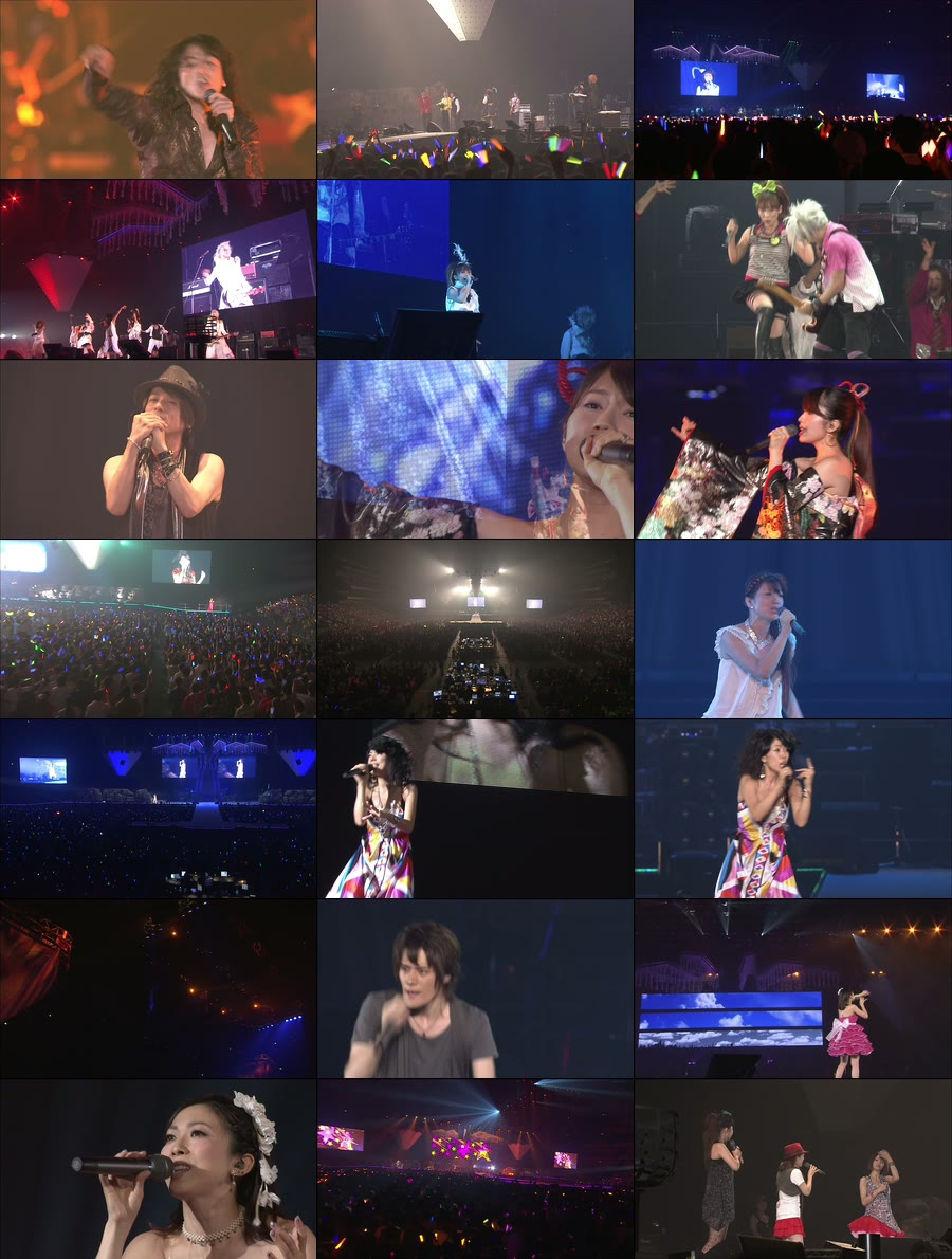 Animelo Summer Live 2010 (3)