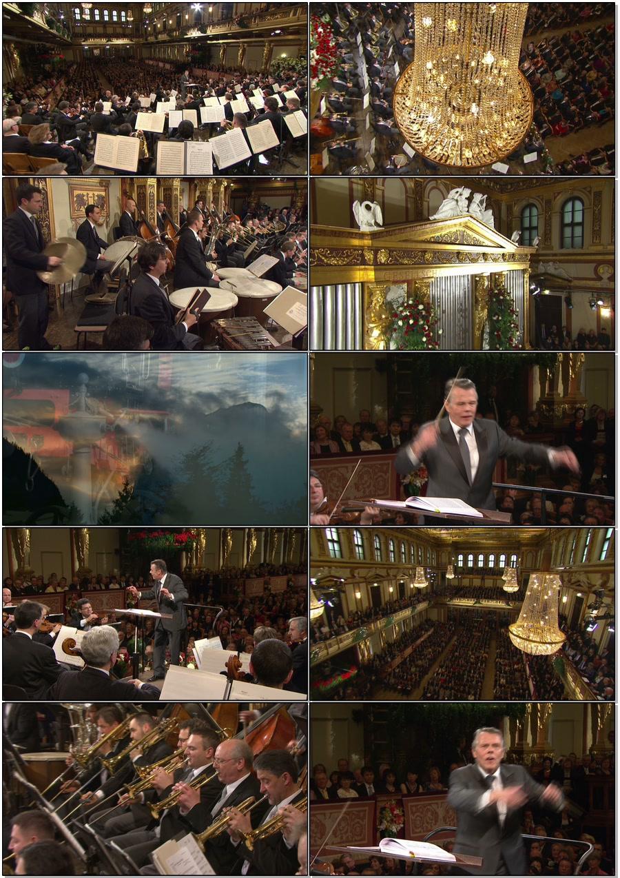 Neujahrskonzert 2012 (3)